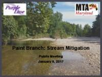 Preview of Paint Branch Stream Restoration Presentation